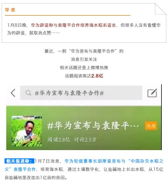 【網絡謠言粉碎機】華為與袁隆平合作培養海水稻是謠言!但先別急著取消點贊…