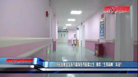 """??118名金猪宝宝春节期间在市医院诞生 猪年""""生育高峰""""将至?"""