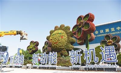 廊坊開發區花團錦簇迎盛會