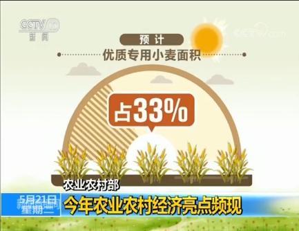 今年農業農村經濟亮點頻現 一季度第一產業增加值8769億元