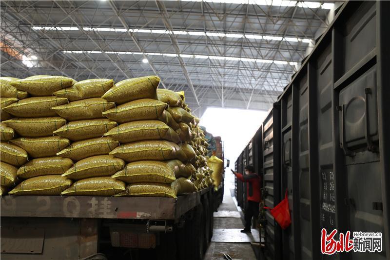 河北省600吨生活物资驰援湖北