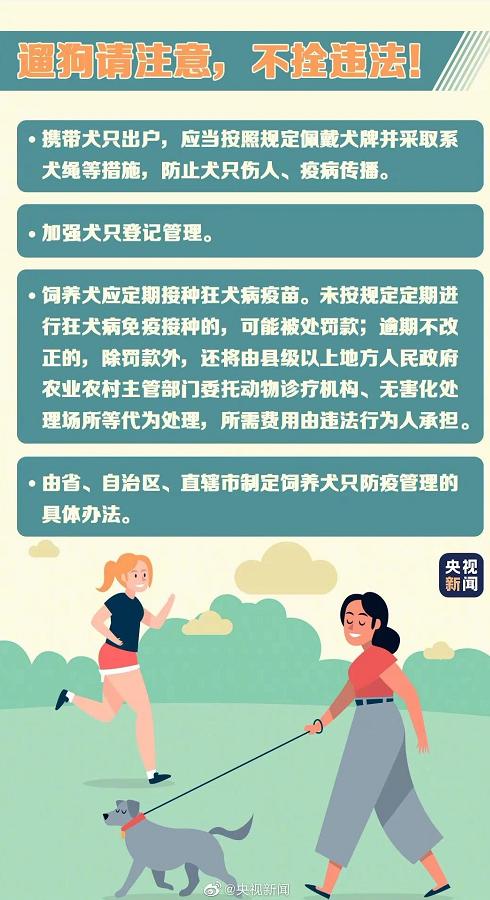 注意!5月1日起,遛狗不拴绳违法