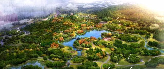 白河城市森林公园十一免费开放