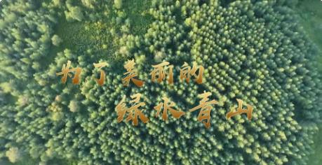 为了美丽的绿水青山——习近平总书记考察生态文明建设回访
