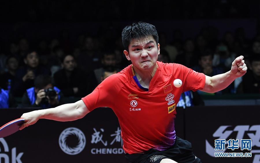 国际乒联男子世界杯:樊振东夺冠