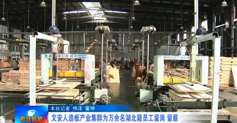 文安人造板产业集群为万余名湖北籍员工留岗留薪