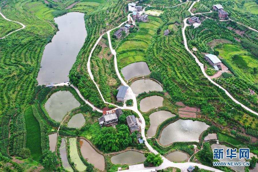 重庆:夏日山乡美