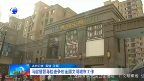 冯韶慧督导检查争创全国文明城市工作