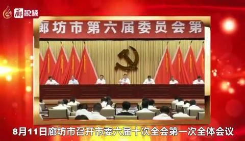 廊视频 |?推动北三县加快融入北京城市副中心,廊坊这么干