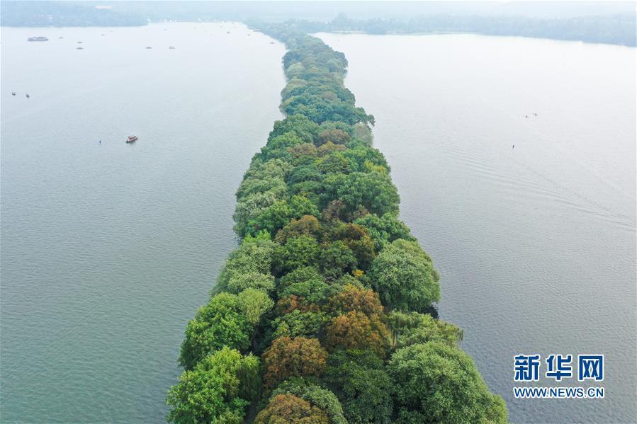 杭州西湖:秋色淡染