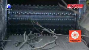 安次区葛鱼城镇:树枝焚烧利环保 美化环境惠民生