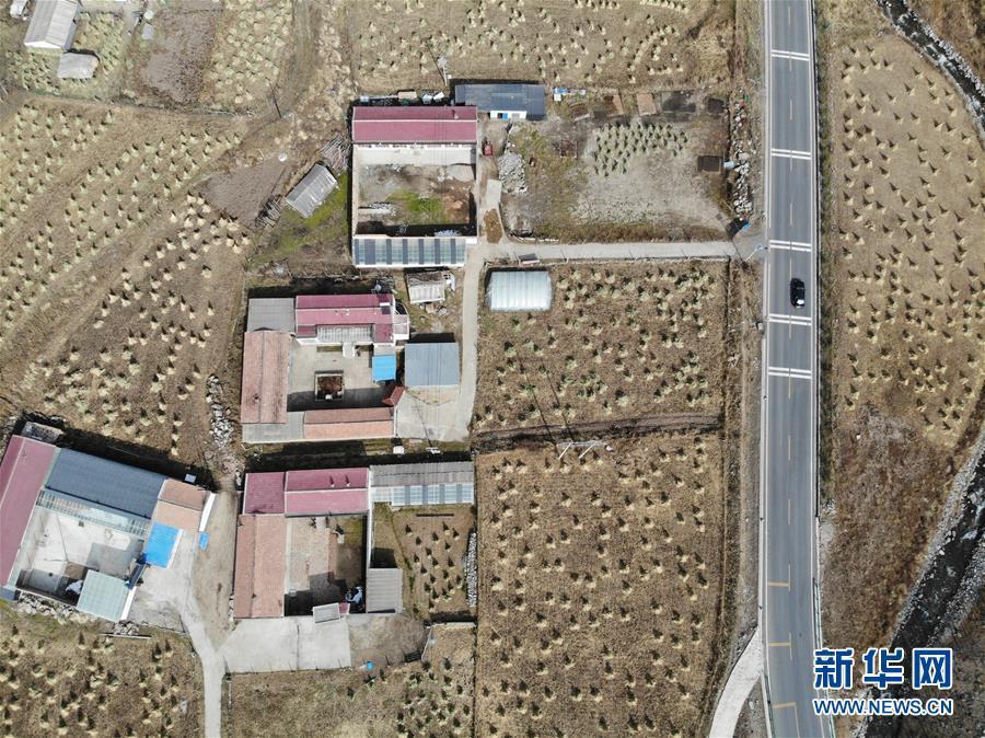 """青海:""""网红公路""""的旅游经济带动地区发展"""