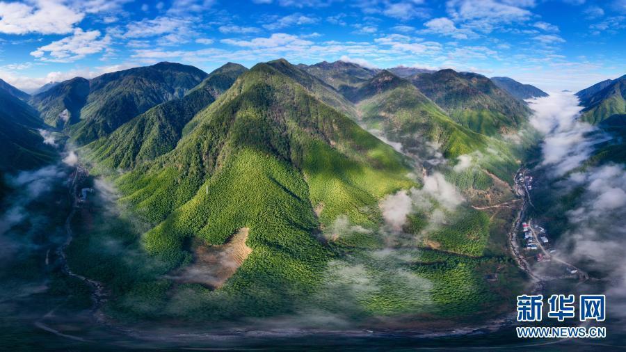 云遮雾绕的武夷黄冈