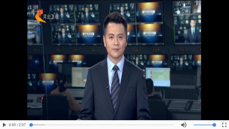 河北省委办公厅 河北省政府办公厅印发 《关于认真做好2021年元旦春节期间有关工作的通知》