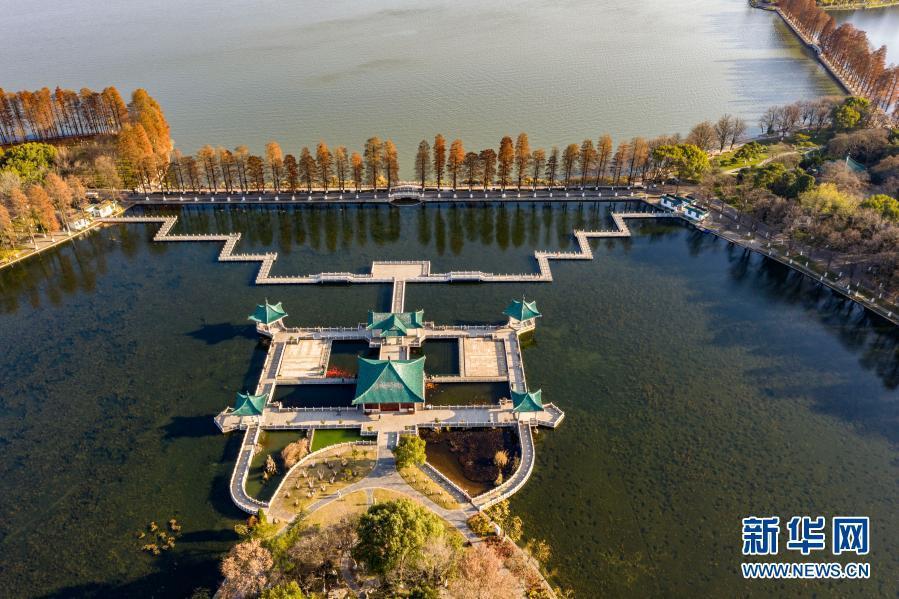 武汉东湖:冬日风光如画