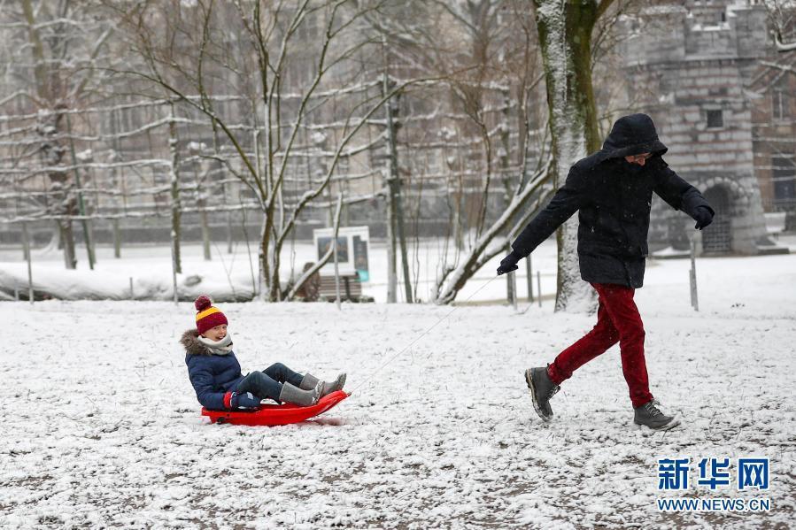雪落布鲁塞尔