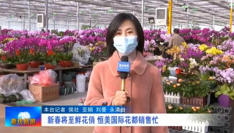 新春将至鲜花俏 恒美国际花都销售忙