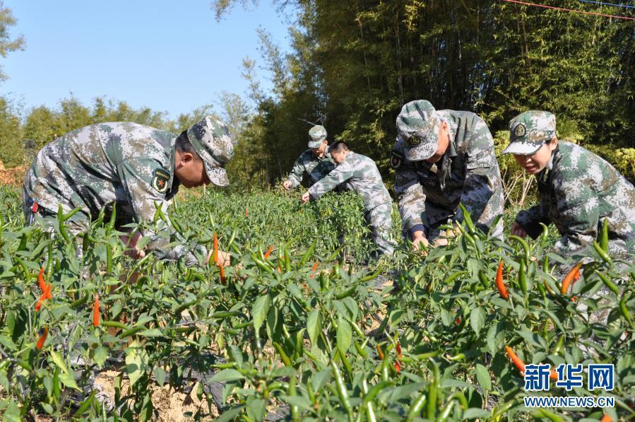 沖鋒在特殊戰場上——軍隊代表委員談脫貧攻堅精神