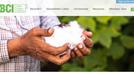 安踏宣布退出BCI:未來也將繼續采購和使用中國棉