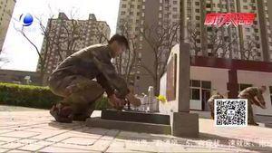 传承红色基因 汲取奋进力量:永清县开展祭扫烈士墓活动