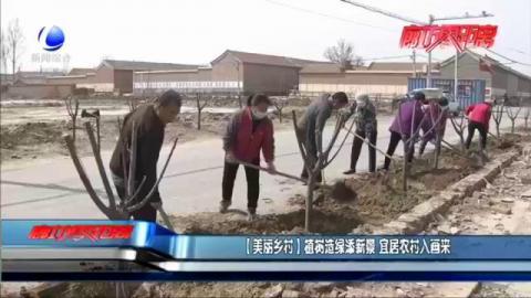 【美丽乡村】植树造绿添新景 宜居农村入画来