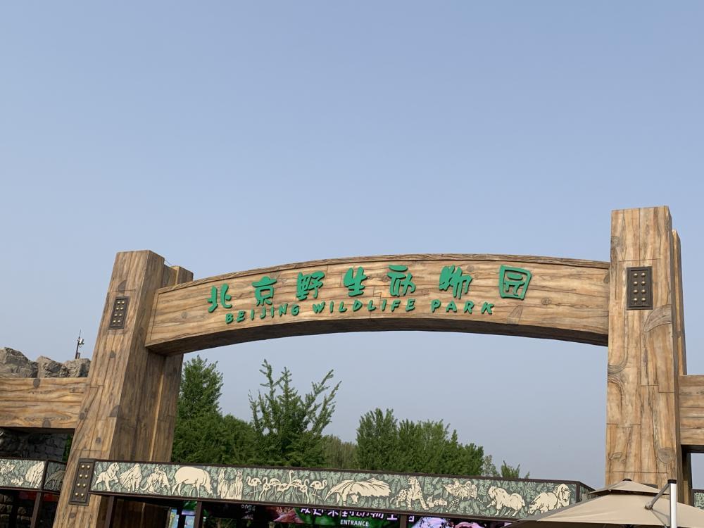 """""""我眼中的大興""""京津冀媒體大興行——相約北京野生動物園"""