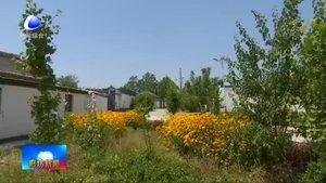 三河市:全面整治城乡环境 提升人民群众获得感幸福感