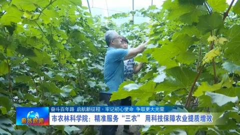 """市农林科学院:精准服务""""三农"""" 用科技保障农业提质增效"""