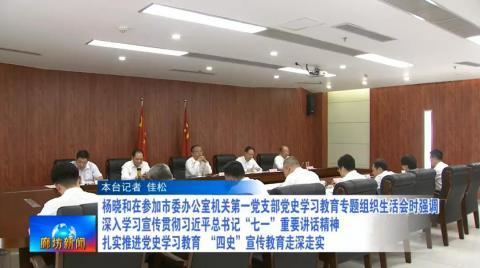 杨晓和参加市委办公室机关第一党支部党史学习教育专题组织生活会